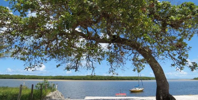 Crédito: Rebeca Oliveira/CB/D.A Press. Ponta de Santo André, na divisa entre o rio e o mar, Santo André, Santa Cruz de Cabrália, Bahia.