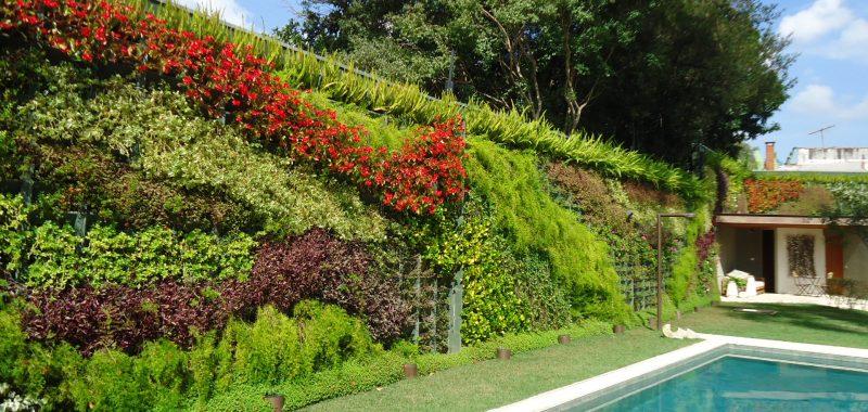 Opções de jardins preservados mantém a forma, textura e cores das plantas. São indicados para amientes internos.